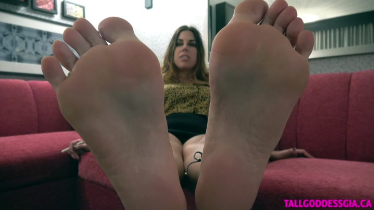 Tall Goddess Gia - Come Here My New Foot Bitch!