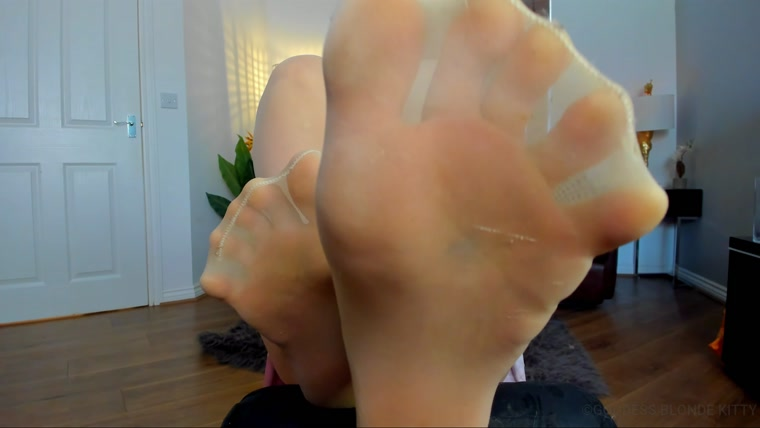 Goddess Kitty - Nylon Foot Worship JOI