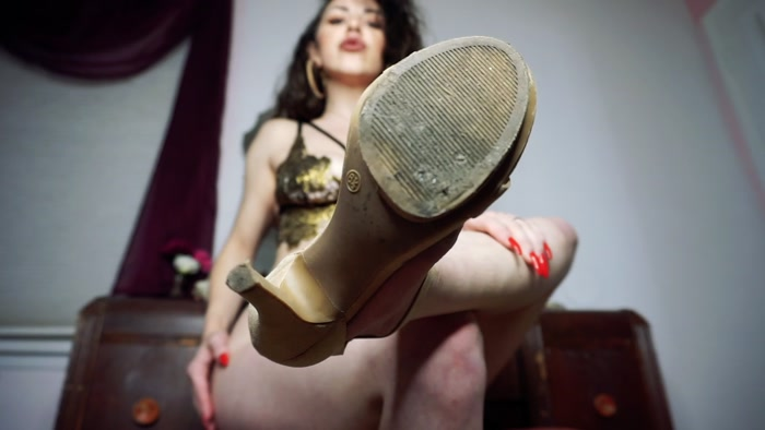 Goddess Fiona - Shoe Licking Bitch